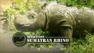 Operation Sumatran Rhino Trailer