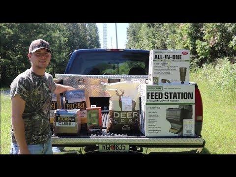 Deer Feeders, Camera Setup, And Quality Food