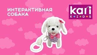 """Обзор интерактивной собаки """"Весёлая Джессика"""", артикул 99610040"""