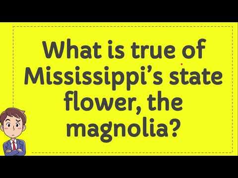 What is true of Mississippi's state flower, the magnolia?