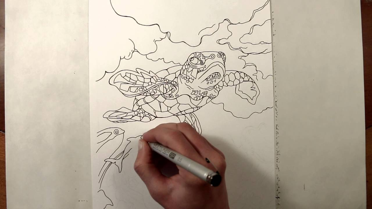 Speed Drawing Sea Turtle Flying Coloring Page