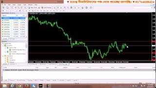 Forex live bangla class 2 # Contact: 01764608434