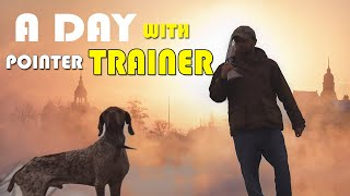 A Day With Pointer Dog Trainer  Facts and Information About Pointer Dog