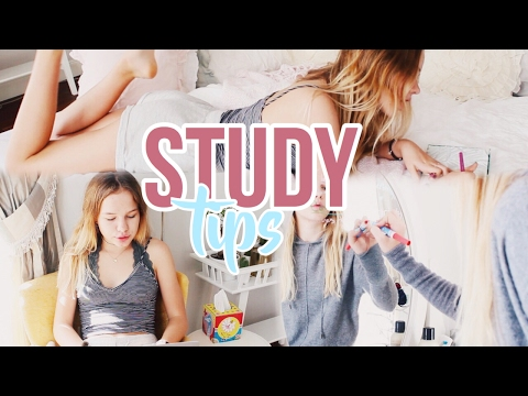 How To Study Better Organization Tips