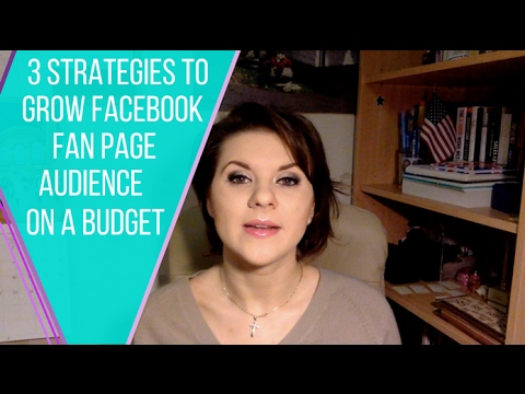3 Strategies to Grow Facebook Fan Page Audience on a Budget