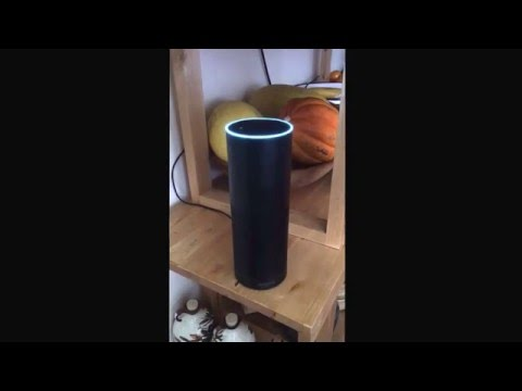 Mike Elgan ordering the Amazon Echo Dot.