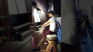 オルガン ミサ奏楽