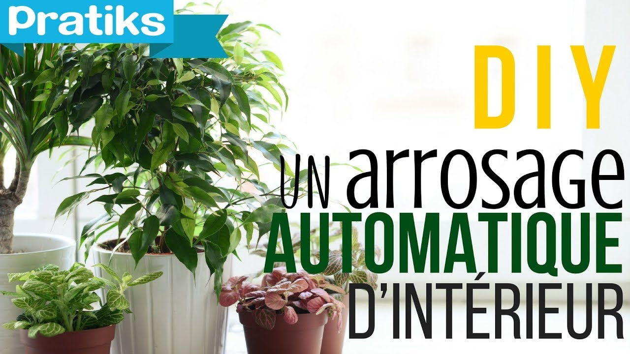 Comment faire un arrosage automatique d 39 int rieur youtube for Arrosage plante interieur