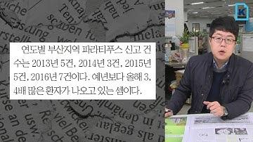 부산 파라티푸스 감염환자 급증 '비상'(신문일기)