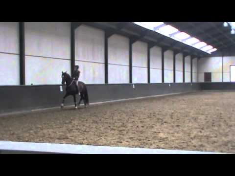 """Because now we are free to be simply us"" - Grand prix dressage movements with a simple cord."