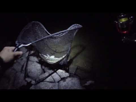 Turawa i nocny sandacz na spinning