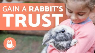 How to Gain the TRUST of a RABBIT? 🐰🥕 (9 Key Tips)