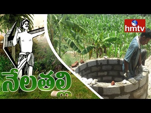 Solution For Drought | Orugallu Farmers Success Story |  Nela Talli | hmtv