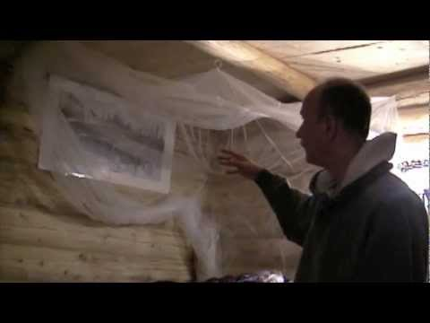 Cabin Building Video Series #2