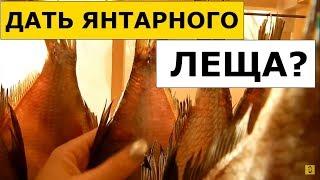 Как Вкусно Засолить Рыбу (Леща) Дома? Обзор