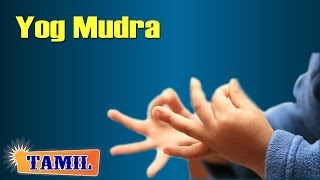 Yoga Mudra   முழுமையான ஆரம்ப யோகா  Yoga Pose For Complete Beginners in Tamil