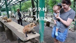 Japan Trip 2016 Fox Village /息子初めての日本で一番喜んだキツネ村