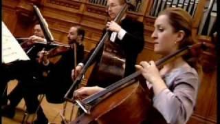 Rimsky-Korsakov: Flight of the Bumblebee / Rachlevsky • Chamber Orchestra Kremlin