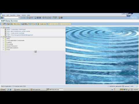 SAP Accounts Payable  and House bank configuration - Live demo