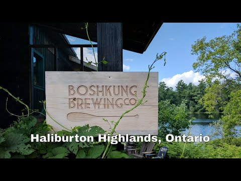 Things To Do in Minden, Ontario: Boshkung Brewing [Travelling Foodie]