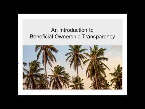 Promoting Transparency in Beneficial Ownership