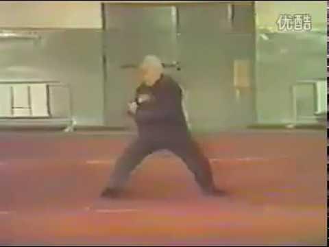 Hong Jun Sheng - Tai Chi style Chen Xinjia [陈氏太极拳新架 Taijiquan style Chen]