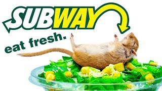 Top 10 Things Subway DOESN'T Want You To KNOW!