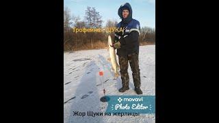 БЕШЕНЫЙ КЛЕВ ЩУКИ на жерлицы ТРОФЕйНАЯ ЩУКА Зимняя рыбалка на озере