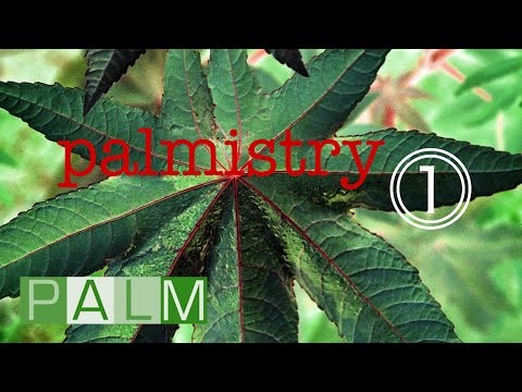 Palmistry Compilation Vol. 1 | One-hour introduction to the world of PALM Pictures