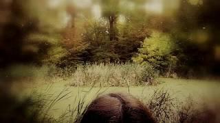 """""""Wer denn?"""" Gedicht von Christian Morgenstern, Musik & Film: Linda Trillhaase"""