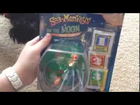 petsmart-haul-+-sea-monkeys
