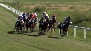Vidéo de la course PMU PRIX CELIO - PRIX DE L'EPIPHANIE
