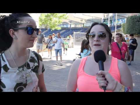 Blogueros TV: Blog del Zoo Aquarium de Madrid | 07/06/2015