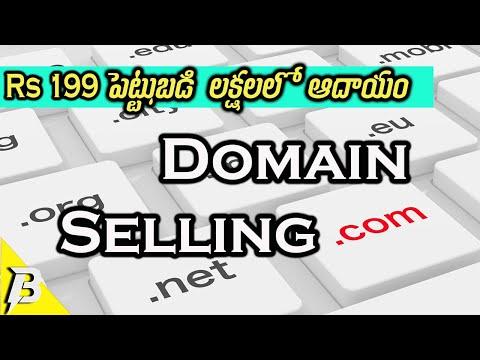 Domain Selling Business in Telugu | డొమైన్ సెల్లింగ్ ఎలా చేయాలి? | Make Money Online In Telugu