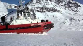 Ice breaker/tug in Greenland