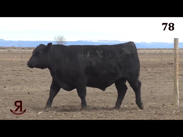Reverse Rocking R Ranch Lot 78