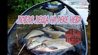 Рыбалка на фидер на реке Нева