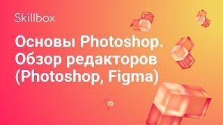 Основы веб-дизайна и обзор Фотошоп, Фигма и Скетч