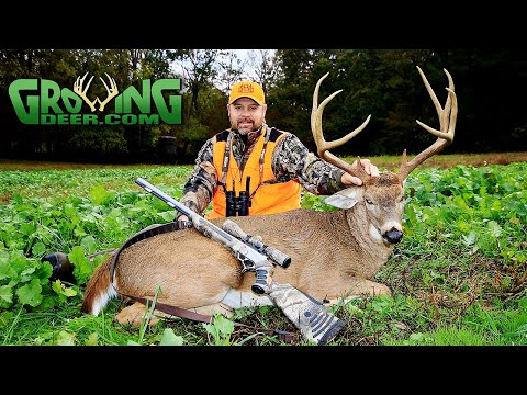 Big Arkansas Buck Down! Pre-rut Hunting Action Gets Hot! (Deer Season 2019 #521)