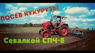 Посев кукурузы  севалкой СПЧ-8