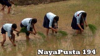 NayaPusta-194