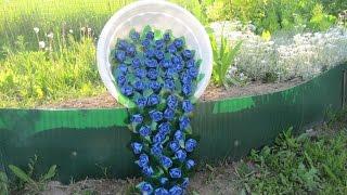 Какой декор для сада можно сделать своими руками