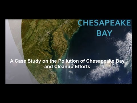 Case Study of Pollution in the Chesapeake Bay ABE 199