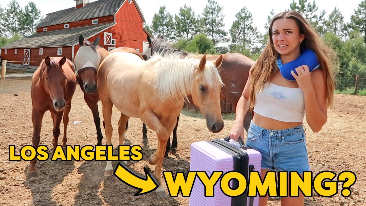 CITY GIRL MOVES TO RANCH FOR 24 HOURS...