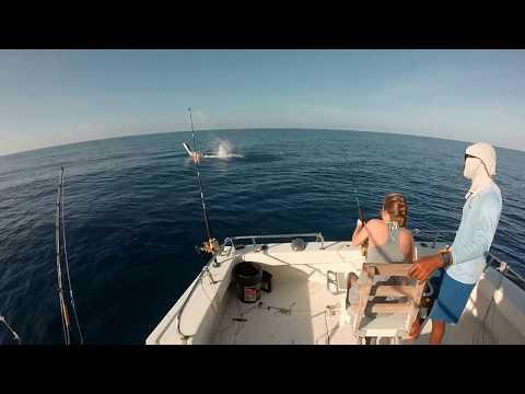 Deep Sea Fishing - Negril, Jamaica