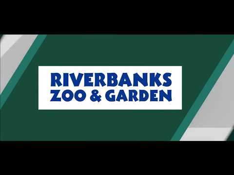 All Access Riverbanks