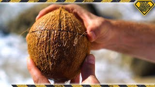 Repeat youtube video How To Open Coconuts Without Any Tools