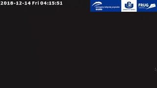 Fokarium w Helu na żywo / Webcam - Kamera pierwsza
