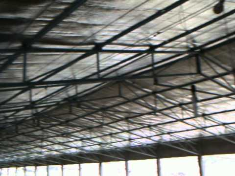 Boiler House Insulated in Automatic Pan Feeding System - Poultry Farm