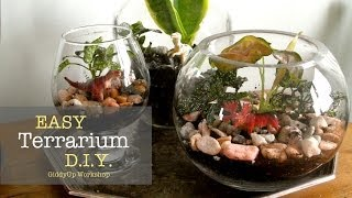 Easy DIY Glass Terrariums